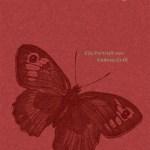 Andrea Grill: Schmetterlinge