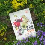 Anja Eder: Wildbienenhelfer – Wildbienen & Blühpflanzen