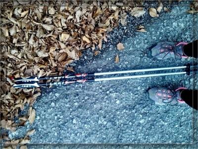 Nordick walking o trekking? L'importante è muoversi!