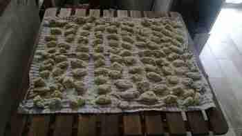 Gnocchi alle zucchine