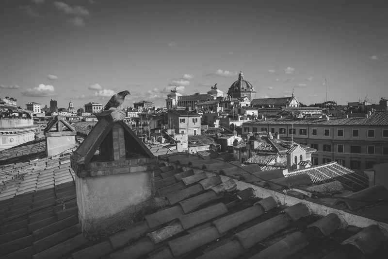 Wedding Photography - Rome roofs