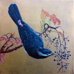 Blue bird_2013