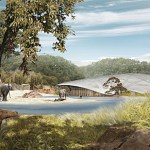 parc-elephants-projet
