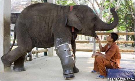 Mosha et sa jambe artificielle en Thailande