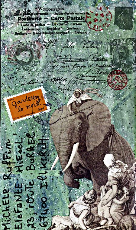 carte postale éléphant Fred