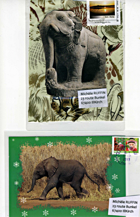 elephant384