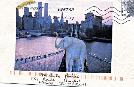 elephant399