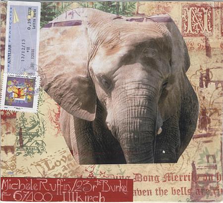 elephantD07