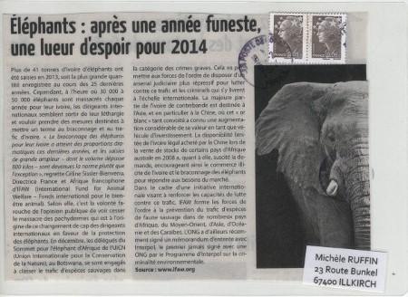 elephant_2014_01 (26)