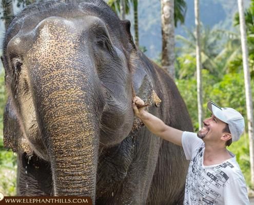 Our guests appreciate and support us with animal welfare, love and affection towards those majestic creatures