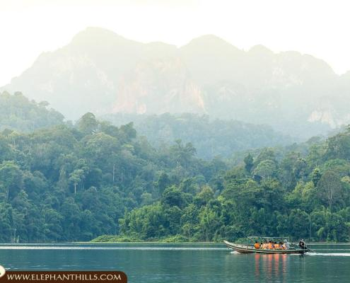 Longtail boat cruise to the Rainforest Camp