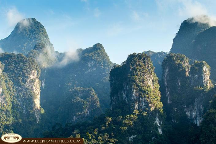 The unspoiled nature of the evergreen rainforest in Southern Thailand