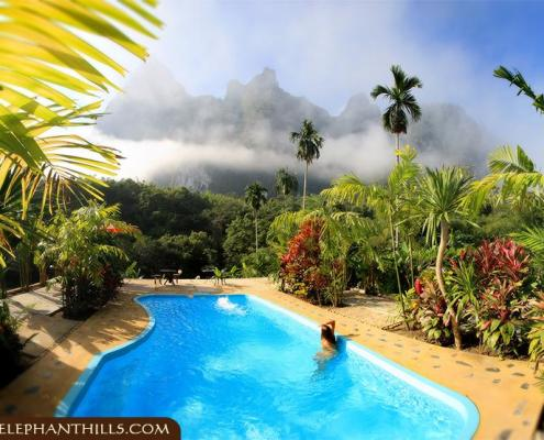 Relaxing at and in the pool, while enjoying the amazing rainforest view
