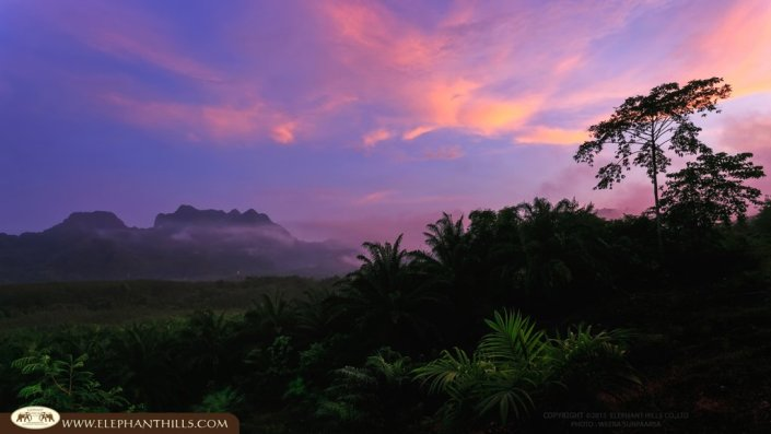 Khao Sok National Park part of Southern Thailand's rainforest