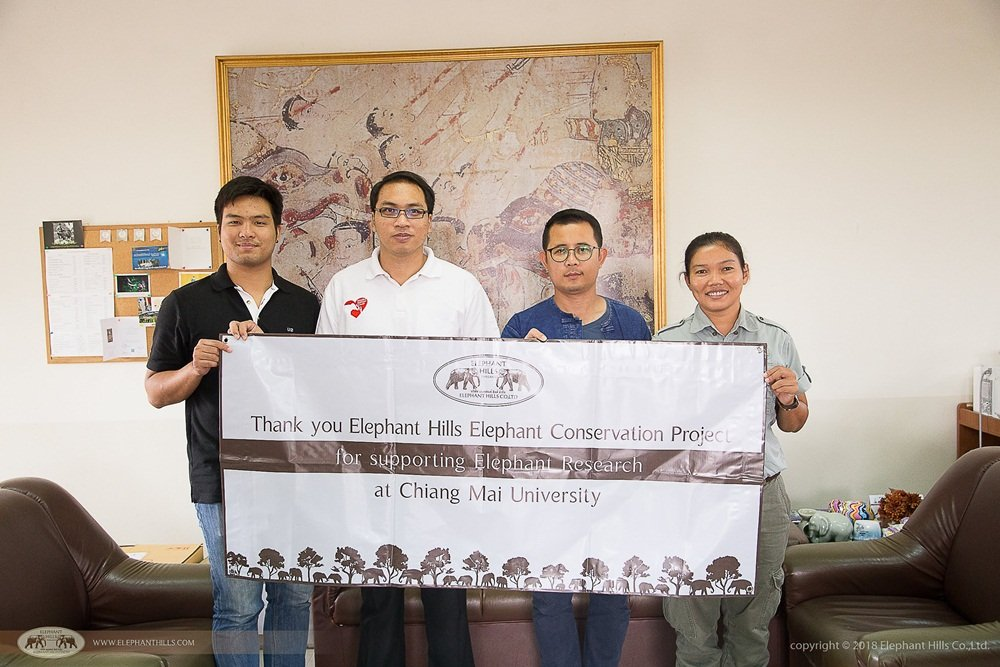 Elephant Hills Elephant Conservation Project contributes to elephant research in Chiang Mai University