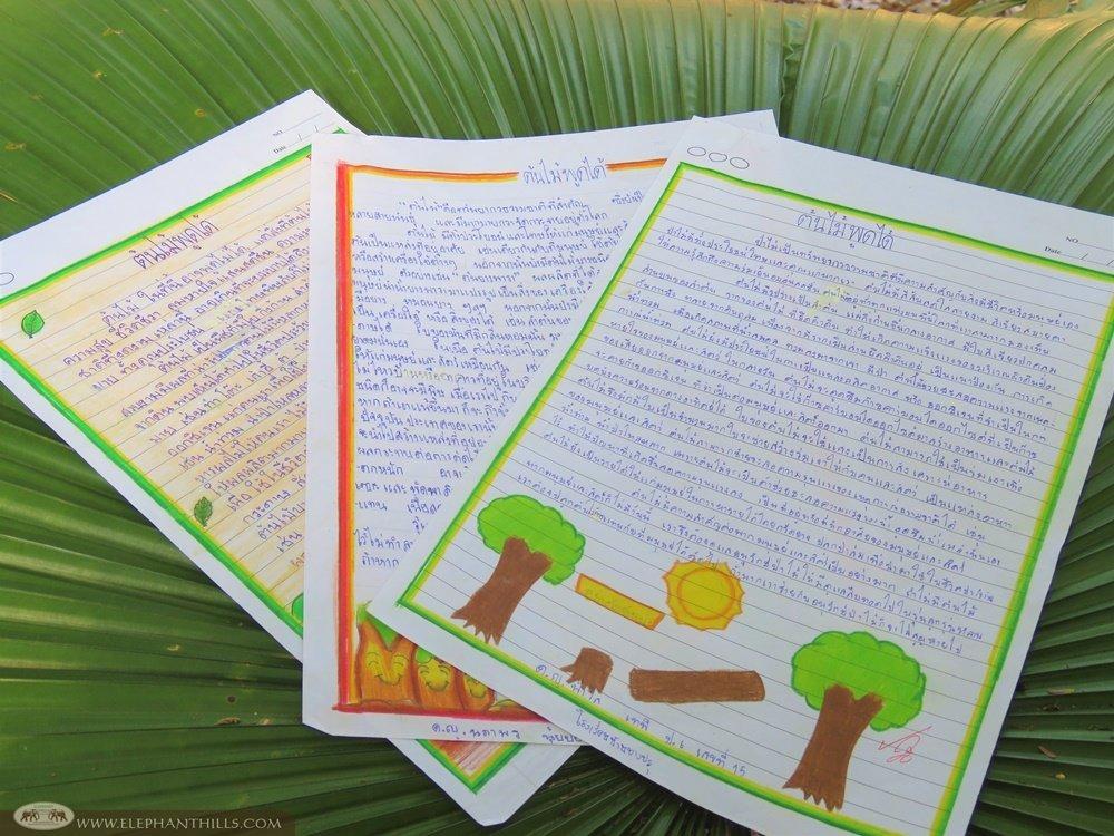 Elephant Hills - Trees can talk essay writing contest 2019