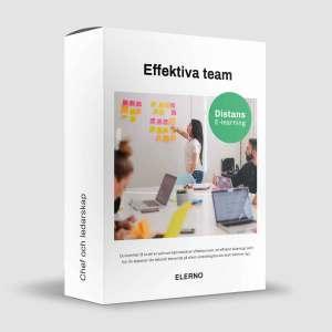 Att skapa effektiva team