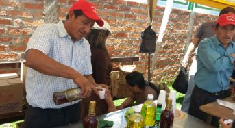 Se realizó festival del capulí en Zhapacal
