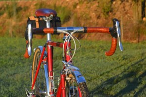 6798 Elessar bicycle 228