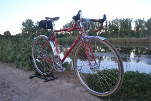 6809 Elessar bicycle 108