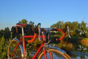 6831 Elessar bicycle 146