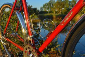 6842 Elessar bicycle 168