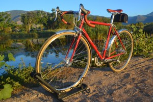 6866 Elessar bicycle 210
