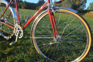 6905 Elessar bicycle 262