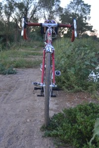 6935 Elessar bicycle 110