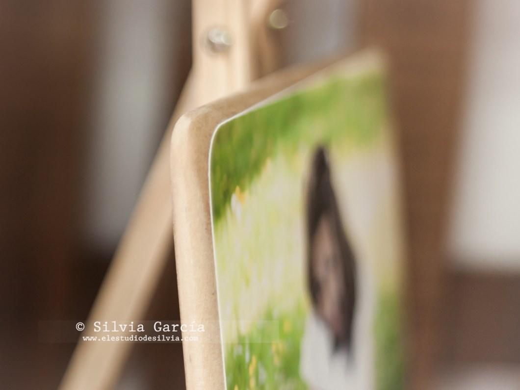_MG_0316, productos artesanales en madera, ideas para tus fotos, fotos en dm, fotos en madera
