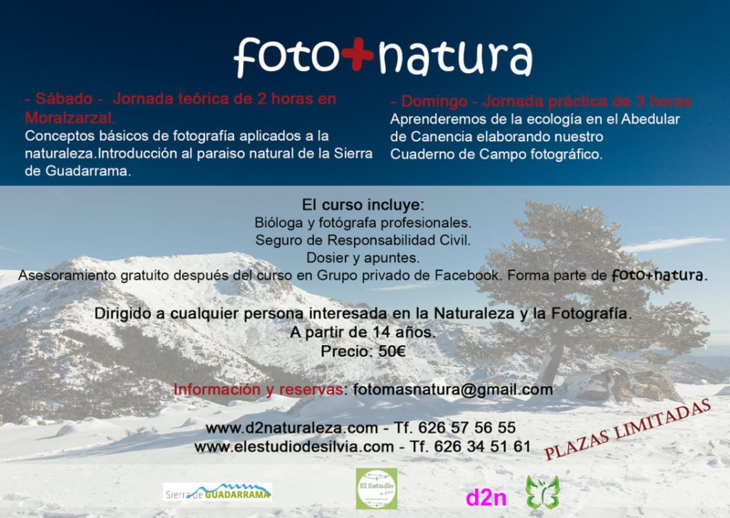 foto+natura, curso de fotografia naturaleza, Sierra de Guadarrama, Abedular de Canencia