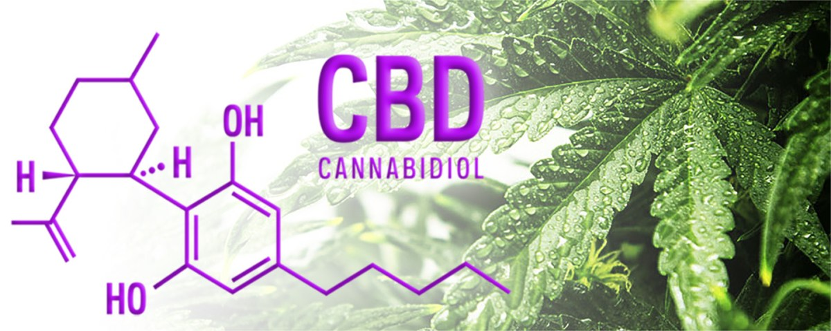 What is CBD? - CANNABIDIOL - And What Does CBD Do?