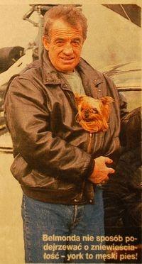 Jean Paul Belmondo et son Yorkshire