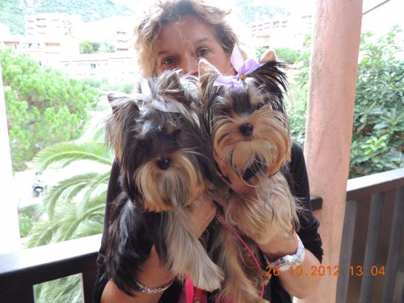 Holly et Howard of Meadow Cottage. Ajaccio.Corse