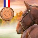 Médaille de Bronze pour Amstrong de Massa et Lætitia ISSELIN