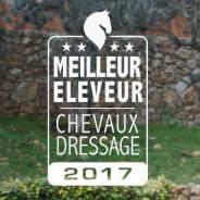 Meilleur Éleveur de Chevaux de Dressage en 2017