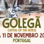 Sylvain Massa : Président d'honneur de la Foire Nationale du Cheval de GOLEGA