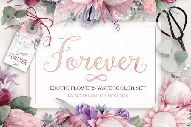 Exotic Tropical Watercolor Flowers