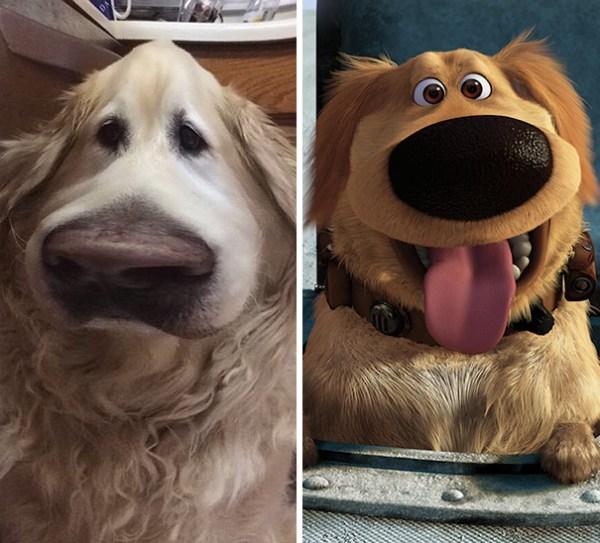 Snapchat Filtros Perro