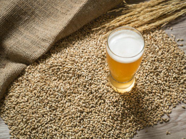 Los secretos de la cerveza: La levadura, ¿se puede reutilizar en otros platos?