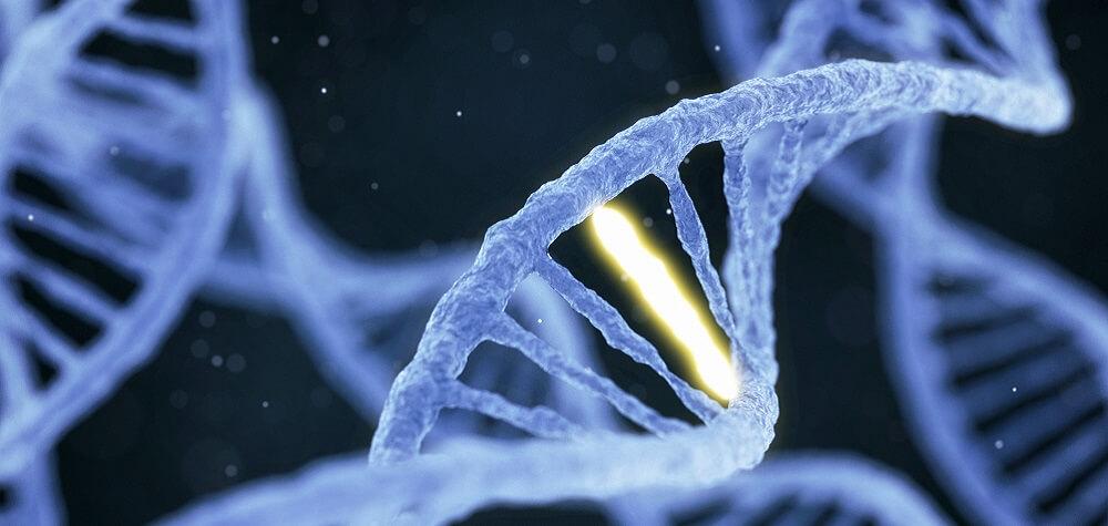 mutación adn