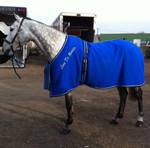 Chemise de présentation pour chevaux en laine épaisse