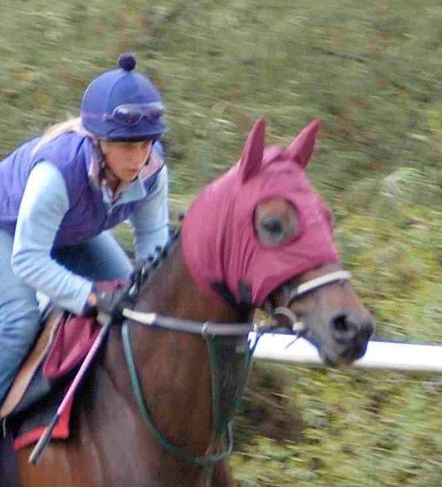 Bonnet imperméable chevaux