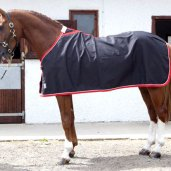 chemise personnalisée cheval