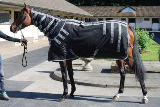 Chemise chevaux therapie Magnetique