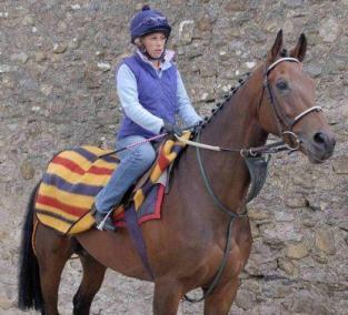 Couvre reins en Newmarket pour chevaux