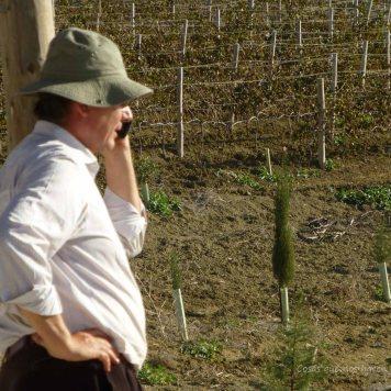 #PeterMaurer #vino #ecologico (2)
