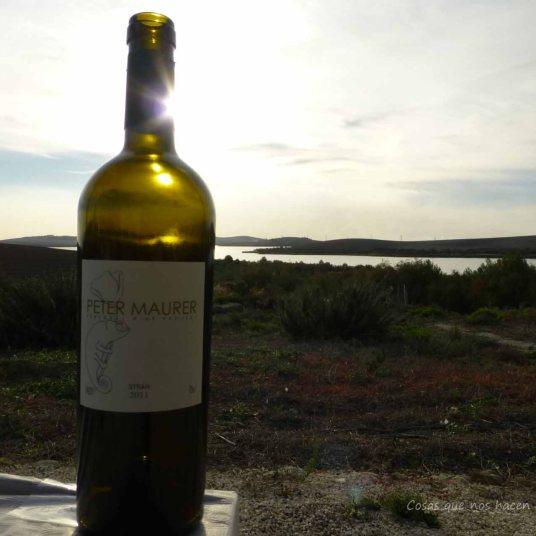 #PeterMaurer #vino #ecologico (25)
