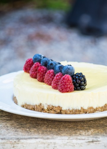 Tarta de queso ligera y exprés by tia lou-0932