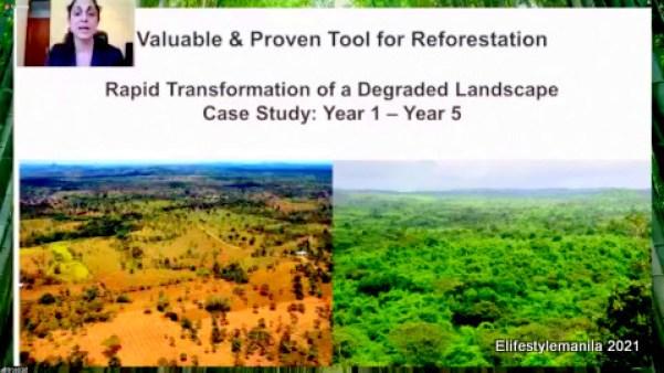 Nestle reforestation